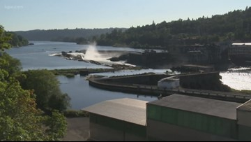 Confederated Tribes of Grand Ronde purchase paper mill site