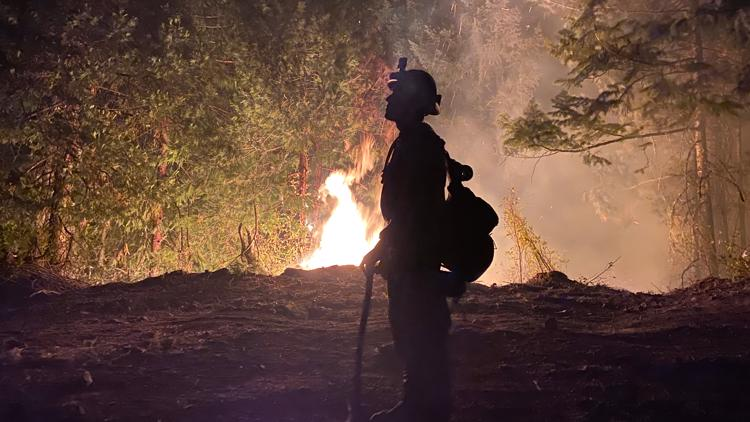 Here's why an expert says a repeat of last year's historic wildfires is unlikely in Oregon