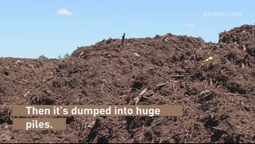PDXplained: Where does compost go?