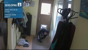 Clackamas County deputies need help finding 'Doggie Door Bandit'