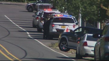 Man who waved guns near Beaverton school in custody