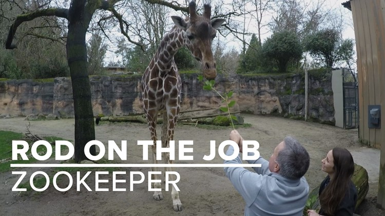 Rod on the Job: Zookeeper at the Oregon Zoo