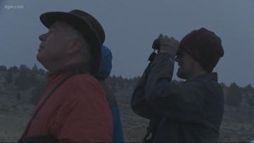 Grant's Getaways: Klamath Bald Eagles