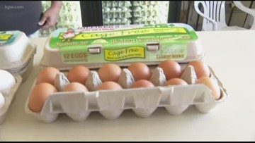 Good to know: Decoding the labels on eggs