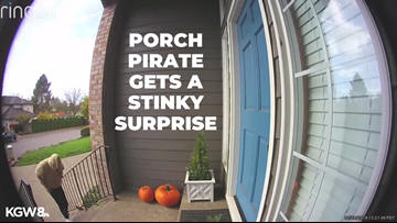 'I filled up a box full of dog poop': Portland porch pirate gets a stinky surprise