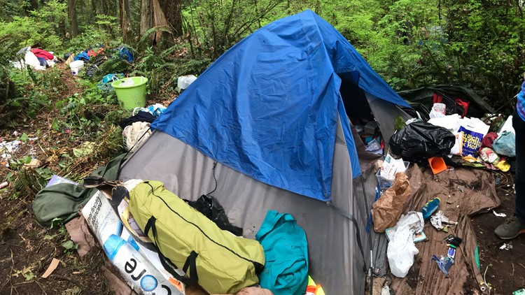 Homeless camp in Forest Park