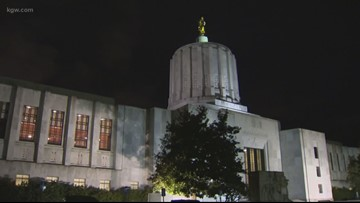 Gun control, rent control, school funding faces 2019 legislature which opened Tuesday