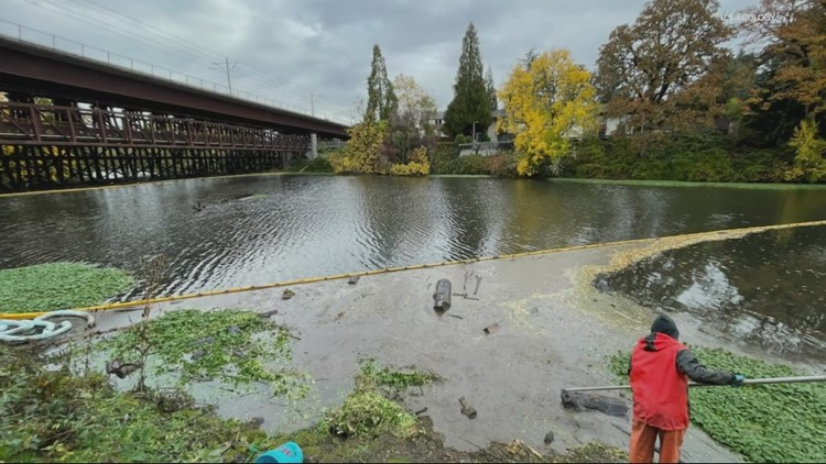 350 gallons of oil spill into Milwaukie creek