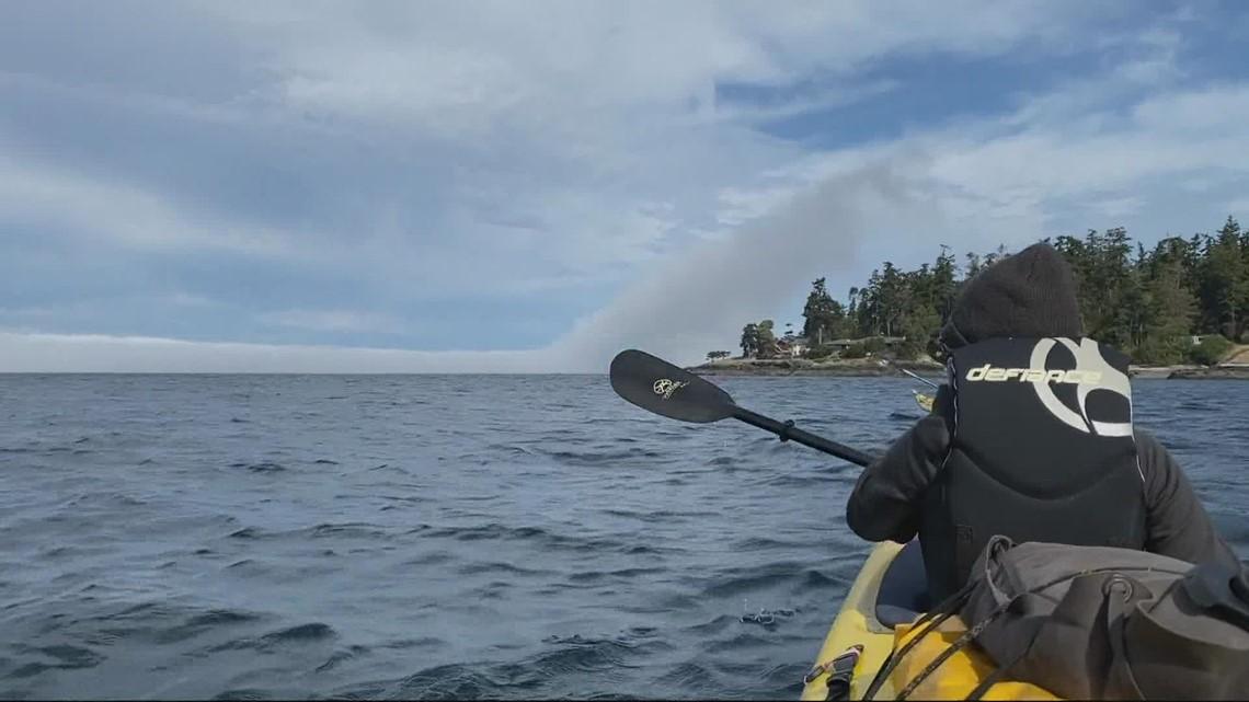 Kayaking San Juans - Let's Get Out There: Sea kayaking around San Juan Islands