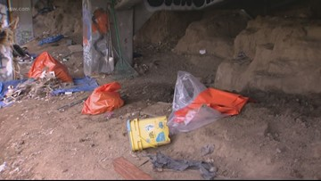 Homeless under the highway: ODOT says camp may have damaged road
