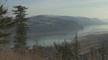 U.S. Forest Service closing all trails in Columbia River Gorge