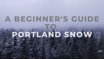A Beginner's Guide to Portland Snow