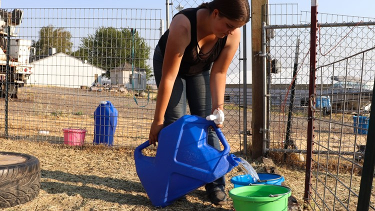Domestic wells run dry in many Klamath Basin homes