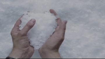 Verify: Can I use table salt on my sidewalk?