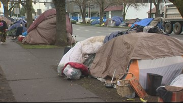 'Making the best of it': Amid homeless crisis, Salem council moves forward with 'Sit-Lie'