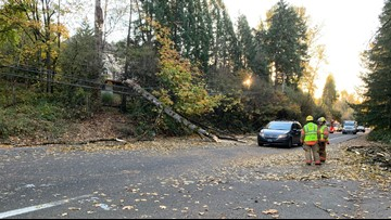 High winds knock out power, bring down tree in Portland