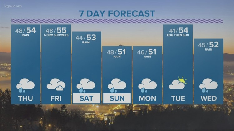 Mild and wet with a rain break Thursday morning
