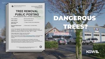 City demands Portland business cut down trees
