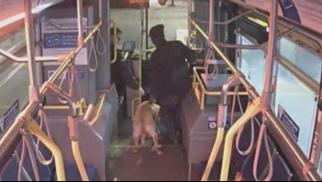 'The dog's gonna stay with me': TriMet bus driver saves dog from being stolen