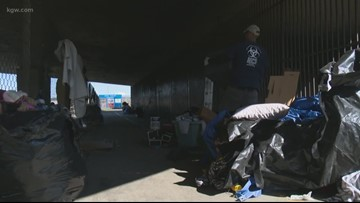 Audit recommends several improvements for homeless camp clean-up program