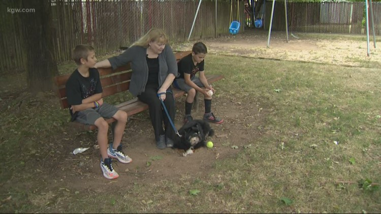 'They can learn from me': Owner of rescued dog says she'll get him microchipped