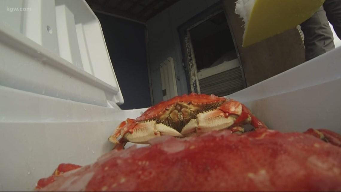 Grant's Getaways: Consider fresh Oregon crab for your Superbowl dinner