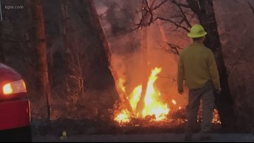 Crews work to contain wildfire in Cowlitz County