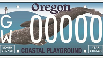 Oregon gray whale license plate funds $300K in research, protection