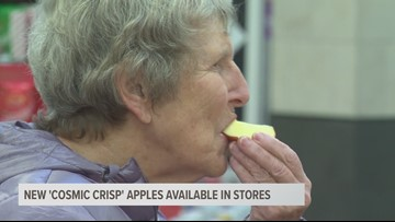New Cosmic Crisp apples available in stores