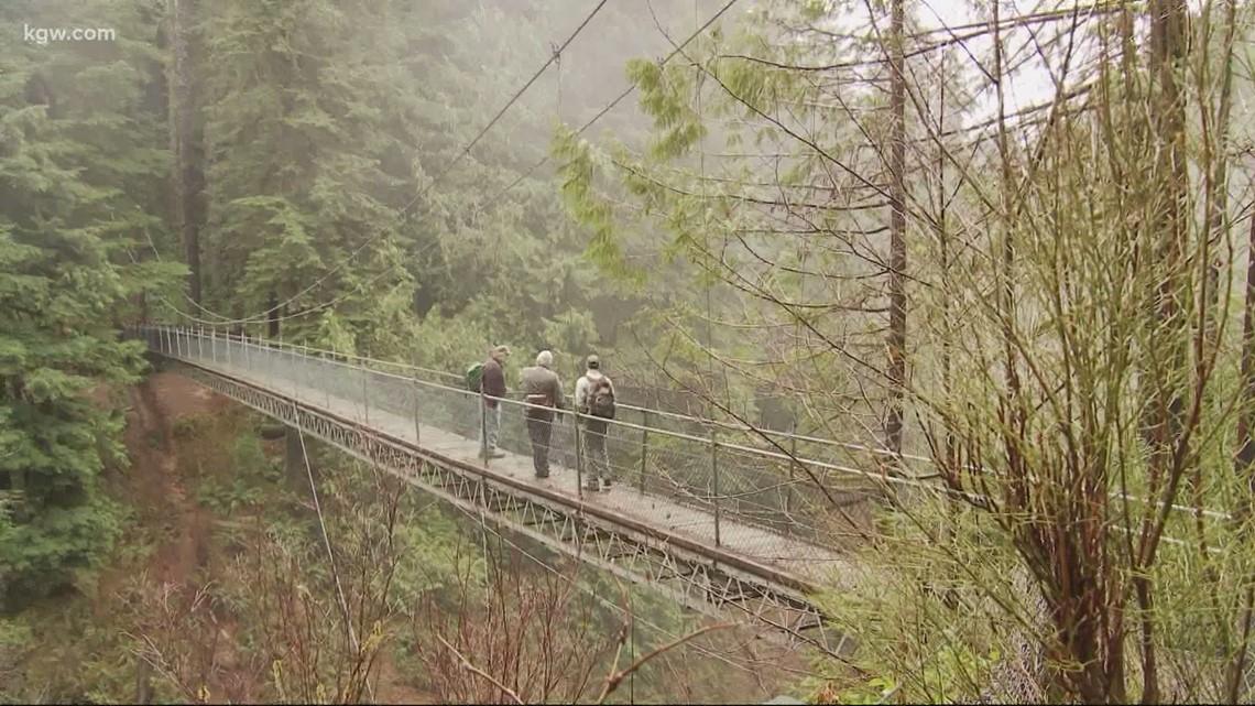 Grant's Getaways: Drift Creek Trail