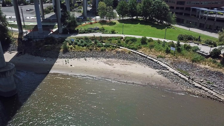 Drone footage of Poet's Beach in Portland.