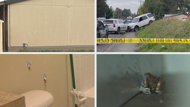 'Somebody needs to be accountable:' Family with bullet-punctured home calls out Clark County deputies for deadly shootout