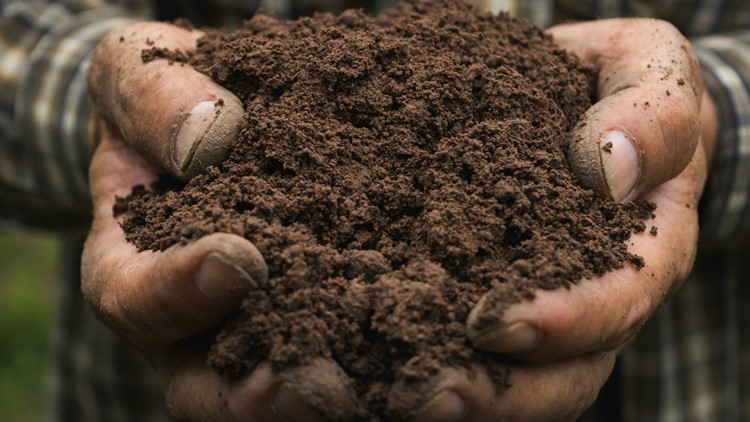 Oregon will allow for human composting as a final resting option