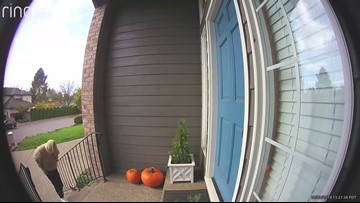 Porch pirate gets a stinky surprise!