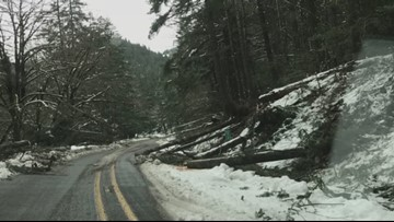 Downed lines, trees continue powerless misery in Southern Oregon