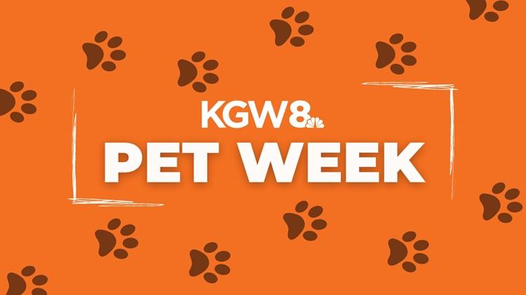 KGW Sunrise: Pet Week
