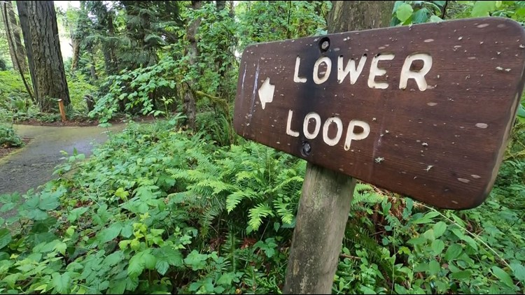 Let's Get Out There: Exploring the Tryon Creek State Natural Area