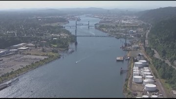 Toxics in Willamette River killing young salmon, study says