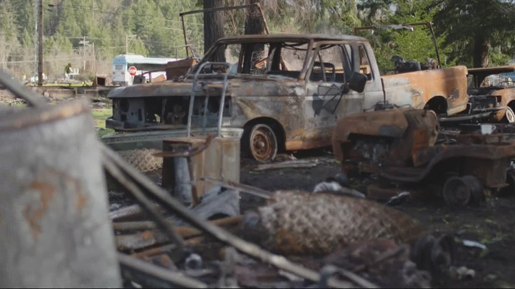 'We hope it's a lifeline': Food bank feeds Santiam Canyon wildfire survivors faced with hunger