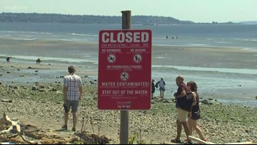 3 Kitsap County beaches to reopen Monday after 3 million-gallon sewage spill