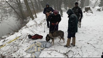 Trapped dog rescued from freezing waters in Washington