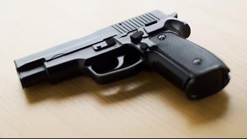 Washington voters approve one of nation's toughest gun legislations, I-1639
