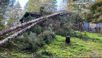 Tornado touches down near Washington town