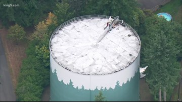 Teens face charges after swimming in Washington water tower