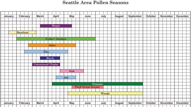 Tree Pollen Seasons