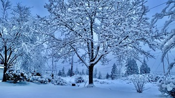 Schools canceled, delayed in Seattle area & western Washington as arctic blast brings lowland snow