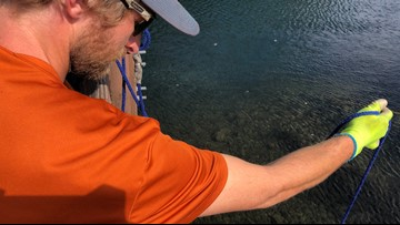 Magnet fishing club could set world record with iron collected from Washington river