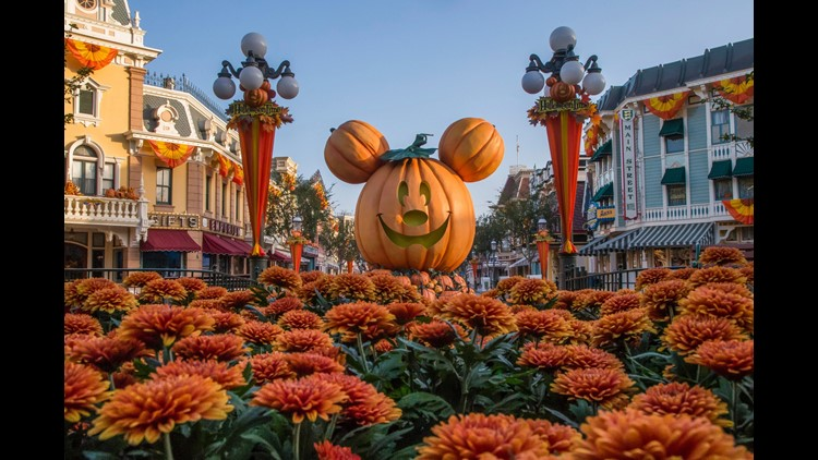 (Photo by Joshua Sudock/Disneyland Resort)