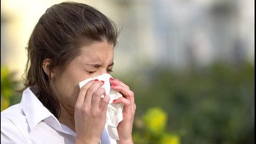 Easy Steps to Prevent Spring Allergies