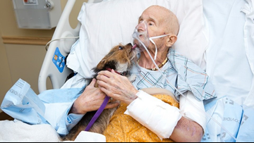 Vietnam veteran in hospice care reunites with his Yorkie for final time